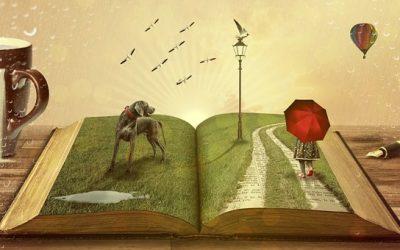 Des livres sur le chemin recommandés par le Magazine