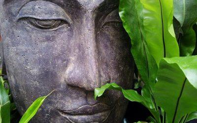 Méditer avec Spiritualités Magazine