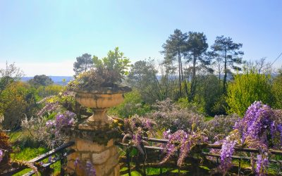 Un séjour de Juillet Spiritualité, bien-être en Périgord et Nouvelle Aquitaine